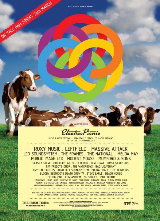 Electric Picnic flyer